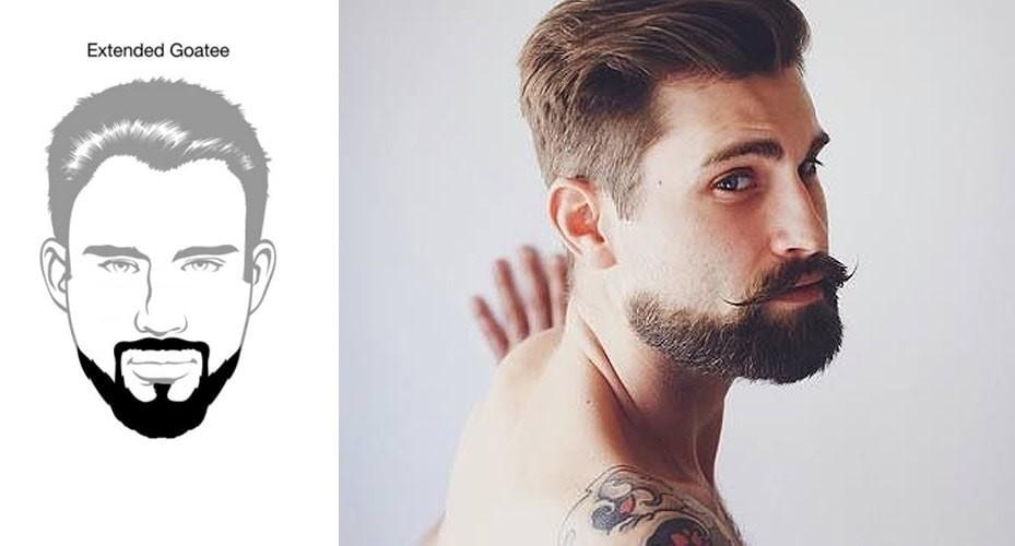 Model barba cu Gusa alungita